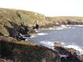 Coastal Adventures in Watercolour - David Bellamy