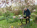 The Magic of Watercolour Flowers - Paul Riley